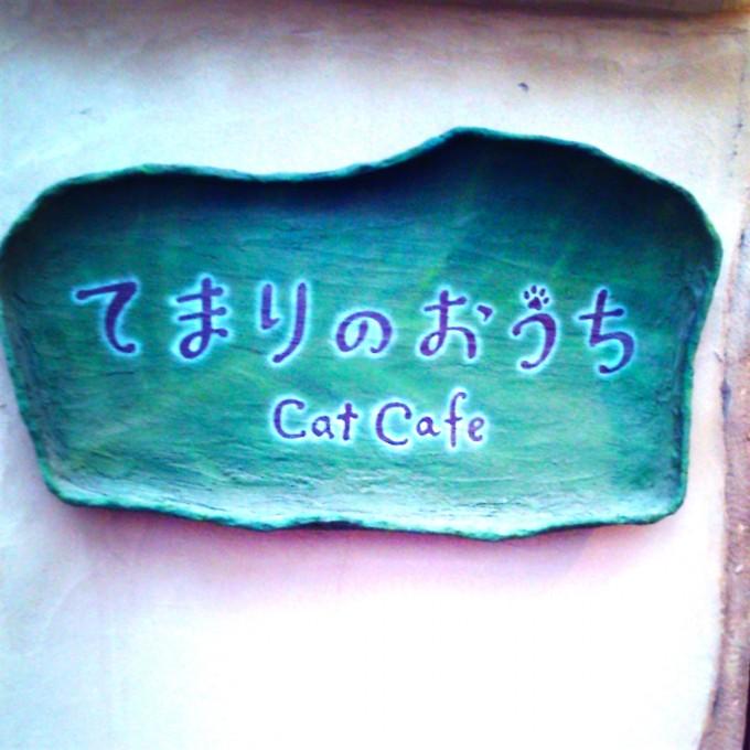 Kanako's Blog